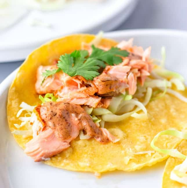up close view of salmon on yellow corn tortilla with shredded cabbage, chipotle sauce, and cilantro.