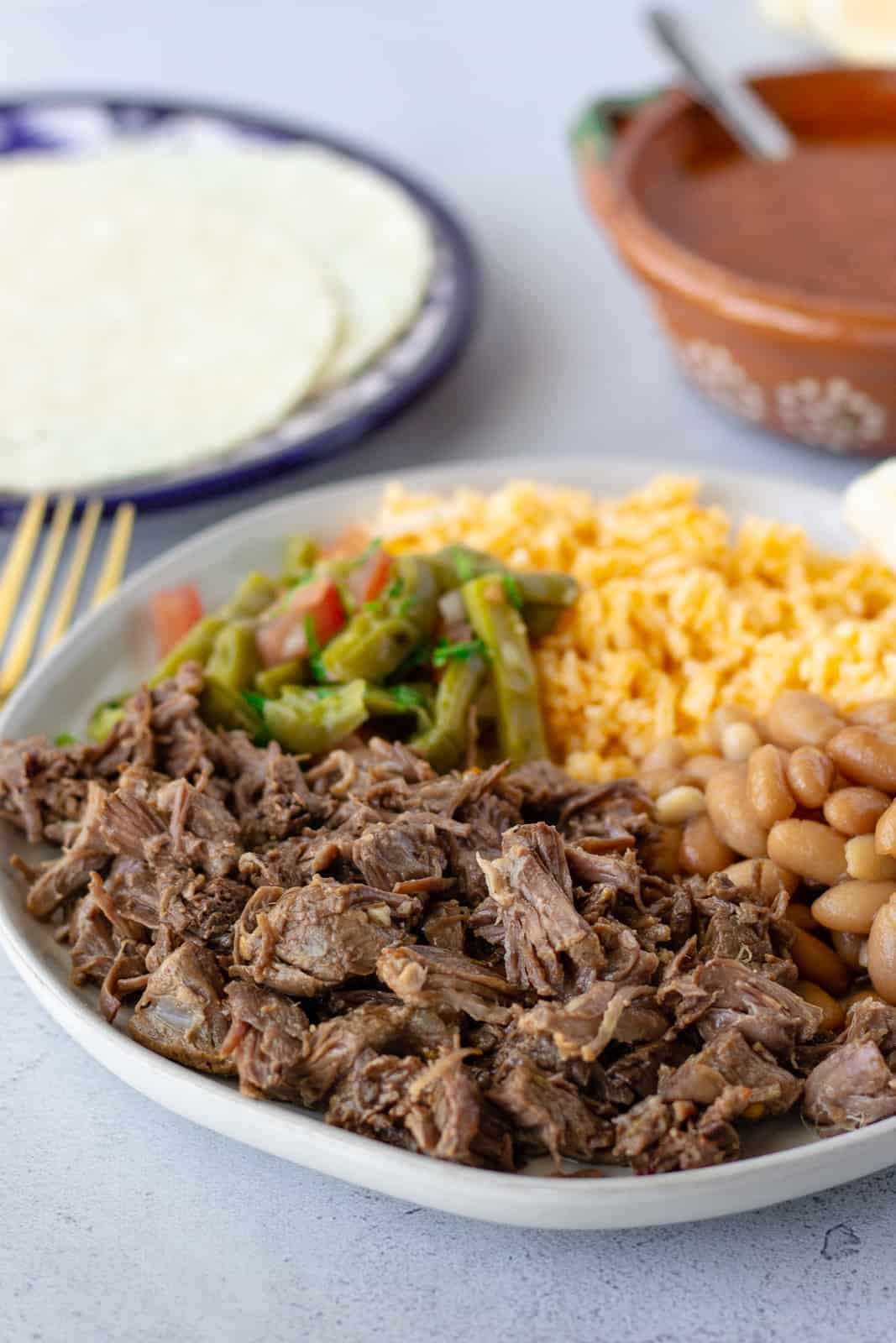 Shredded beef on a plate with rice, beans, cactus salad, and a side of tortillas on a plate.
