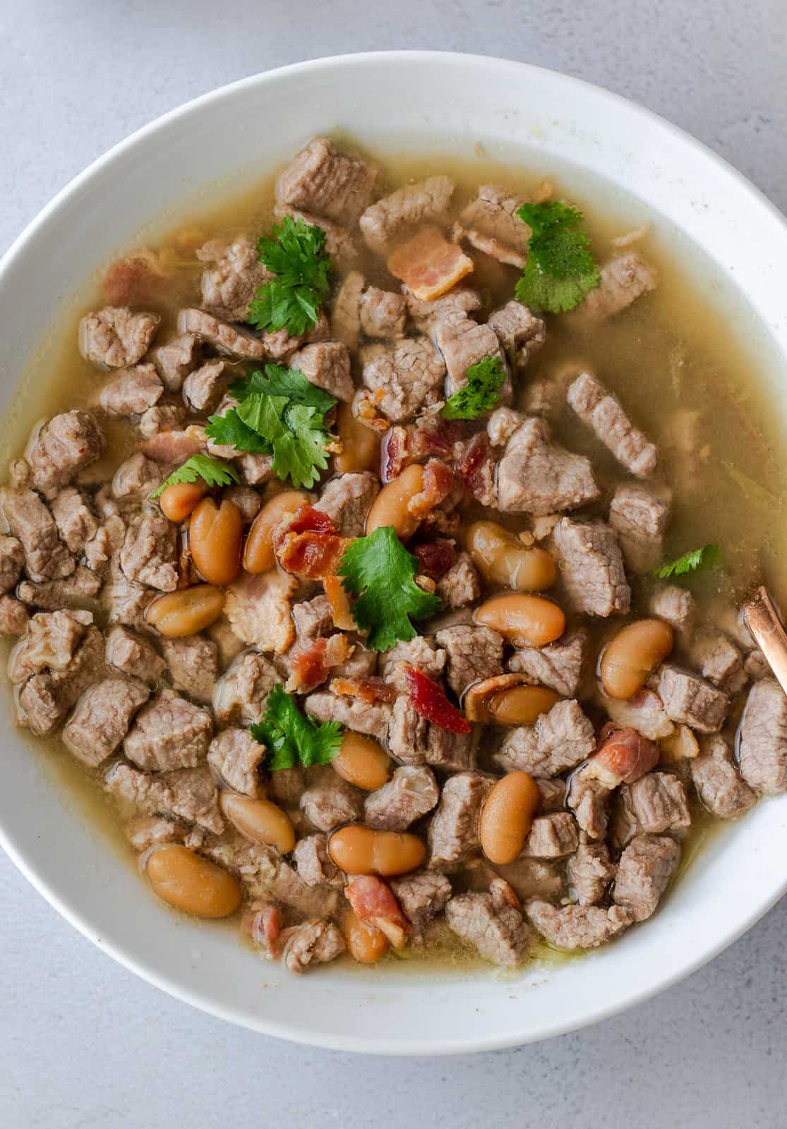 Overhead view of carne en su jugo in a white bowl, topped with beans, bacon bits, and cilantro.